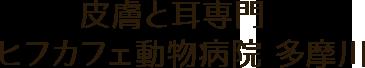 皮膚と耳専門 ヒフカフェ動物病院 多摩川|カフェ併設の皮膚・耳の病気に力を入れた動物病院